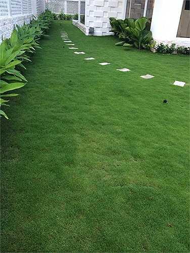 Một góc sân vườn của ngôi biệt thự. Một nguồn tin thân cận với gia đình cho biết, riêng mảnh đất 300m2 này đã có giá khoảng 10 tỷ đồng. (Nguồn: Dân Việt)