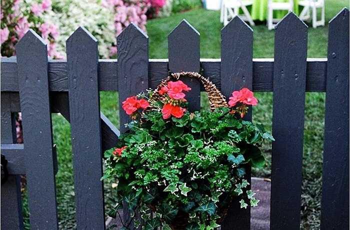 Bức tường màu đen là một chuyện, nhưng bối cảnh khu vườn rực rỡ được trồng đầy hoa màu ở khắp mọi nơi thì sao? Hàng rào đen có phải một sự hợp tác tuyệt vời cho tất cả các hệ thực vật và động vật hay là nó quá tối và thê lương cho khu vực ngoài trời?
