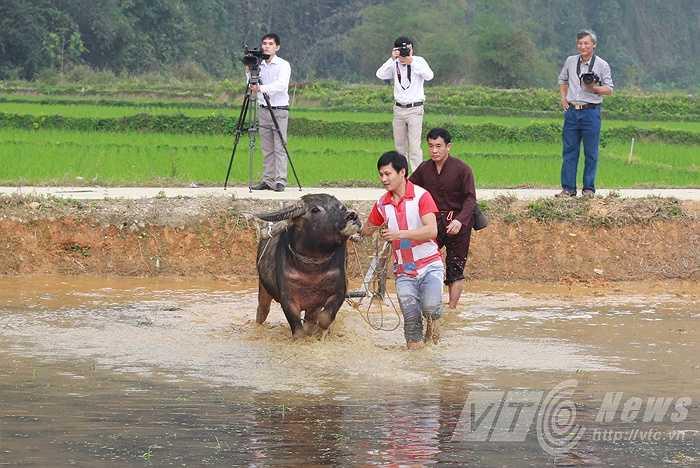 Trong khi các thầy mo đang làm lễ cúng, thì ông Trưởng phòng Nông nghiệp huyện Lâm Bình thực hiện nghi thức cày ruộng.