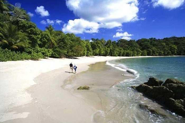 Nếu bạn vừa thích thám hiểm núi rừng và đi chơi biển thì nơi đây là địa điểm thích hợp cho bạn. Tọa lạc trong vườn quốc gia Manuel Antonio, bãi biển này là nơi phù hợp cho những ai muốn ngắm hệ sinh thái động thực vật trù phú của Costa Rica và tận hưởng nghỉ ngơi trên bãi biển trải đầy cát trắng và nắng.