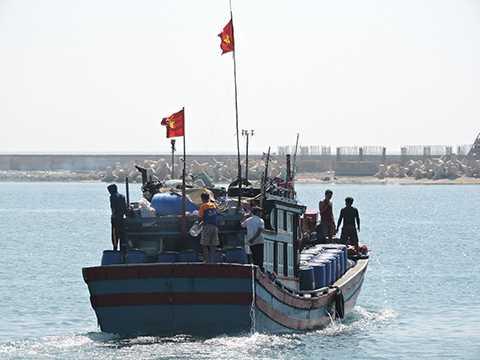 """Ngư dân, Lý Sơn, trúng """"lộc biển"""", đầu năm, Tết Ất Mùi"""