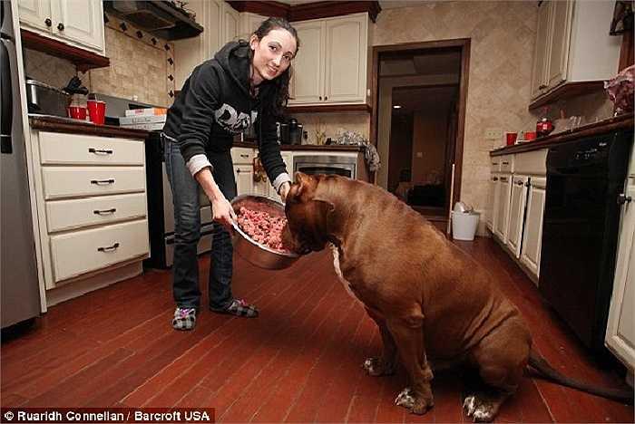 Bữa ăn tối giàu protein của Hulk với 2kg thịt bò xay