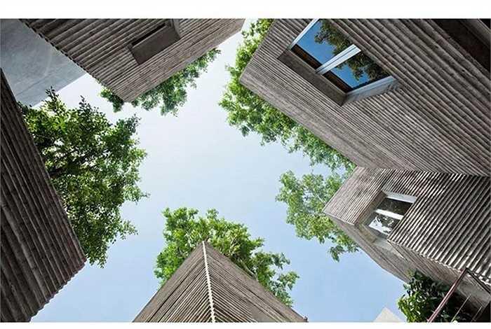 Đây là một công trình xanh do kiến trúc sư Võ Trọng Nghĩa thiết kế. Ngoài lọt Top 15 nhà đẹp nhất năm 2015 của Bảo tàng London, House for Trees đã nhiều lần đạt giải thưởng quốc tế danh giá như từng đạt giải nhất duy nhất tại giải thưởng AR House của Anh, Huy chương Vàng tại giải thưởng kiến trúc của Hội kiến trúc sư Châu Á (ARCASIA), giành chiến thắng ở hạng mục Nhà ở tại Festival Kiến trúc thế giới 2014...