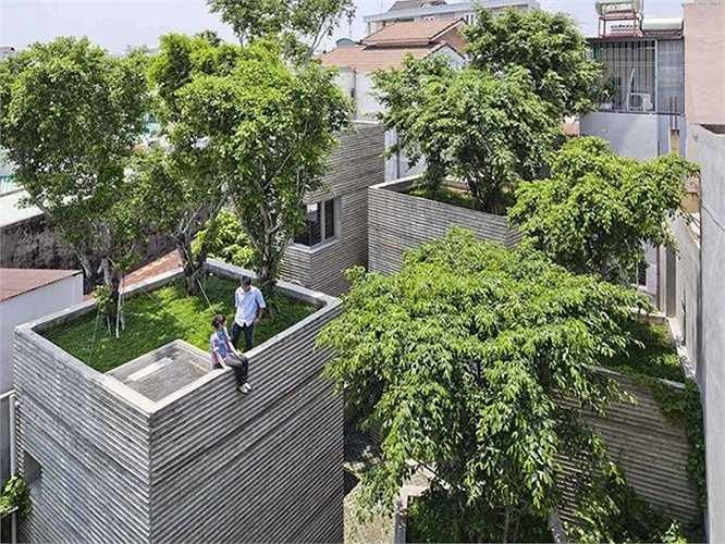 Công trình House for Trees dựa trên ý tưởng những chậu cây xanh, các cây cổ thụ trồng trên mái nhà đem lại không gian xanh và bầu không khí trong lành bao phủ khắp nhà, làm giảm bớt căng thẳng cho gia chủ cũng như việc tiêu hao năng lượng của ngôi nhà.