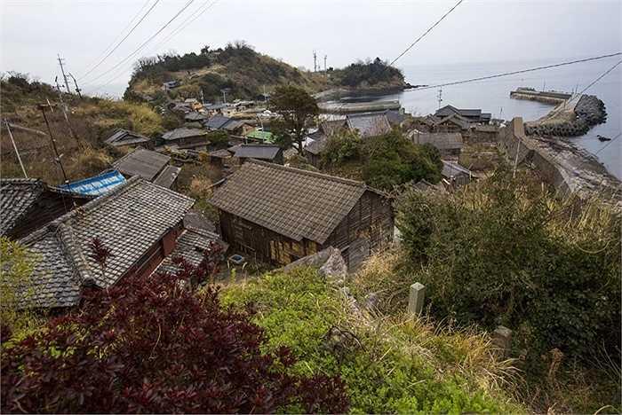 Khung cảnh yên bình của hòn đảo Aoshima