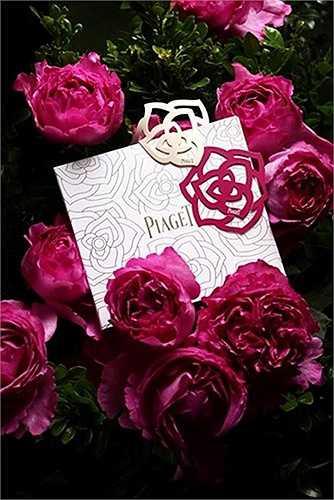 Những bông hoa hồng sang trọng bậc nhất đến từ thương hiệu xa xỉ Piaget cũng xuất hiện trên thị trường. Hiện tại, cửa hàng nhập hoa chưa công bố giá hoa, song nhiều người dự đoán mỗi bông hoa sẽ có giá không hề dễ chịu. Ảnh: FBNV