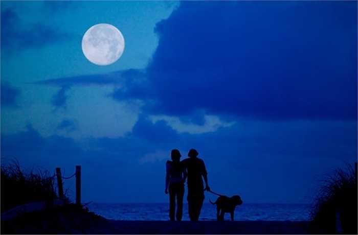 Đừng bao giờ thề nguyện dưới ánh trăng, bởi vì trăng lúc tròn lúc khuyết, tình yêu của bạn cũng sẽ thay đổi theo nó mà thôi