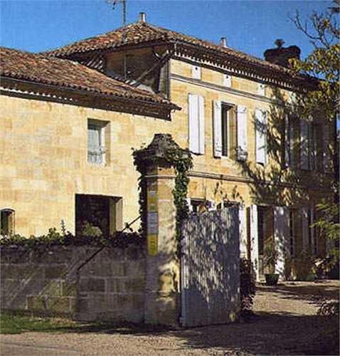 Vào năm 2011, Triệu Vy cùng chồng mua nhà máy sản xuất rượu nho Chateau Monlot tại Pháp. Cô là sao châu Á đầu tiên sở hữu nhà máy rượu chính gốc châu Âu. Chateau Monlot rộng 7 ha và có khu nghỉ dưỡng sang trọng.