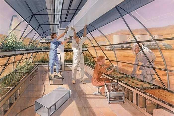 Hiệp hội Sao hỏa (Mars Society) tin rằng nhân loại có đủ công nghệ cần thiết để thực hiện một chuyến du hành có người lái tới hành tinh đỏ chỉ trong vòng một thập kỷ. Người bình thường có thể sống bằng nhà kính bơm hơi được bảo vệ bởi các tấm nhựa chống tia UV.