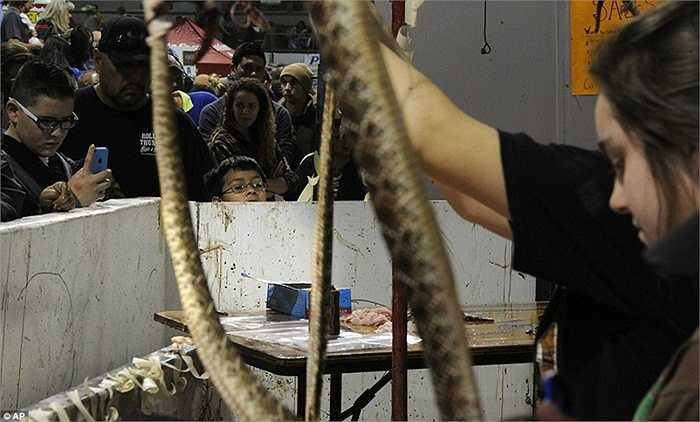 Quá trình làm thịt rắn diễn ra khá lâu