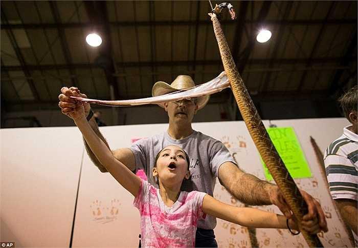 Một bé gái được cho phép trải nghiệm việc mổ rắn