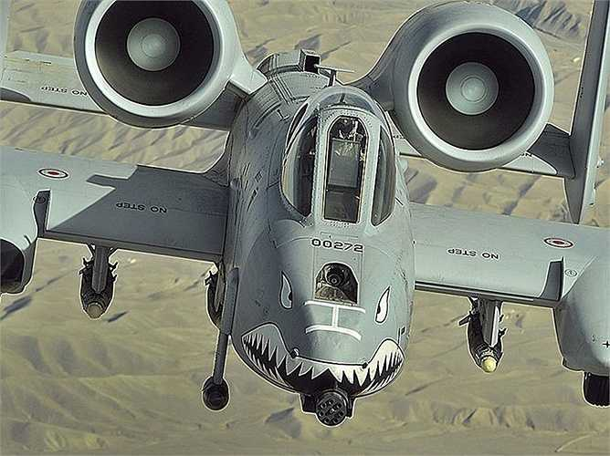 A-10 Warthog, cường kích của Mỹ
