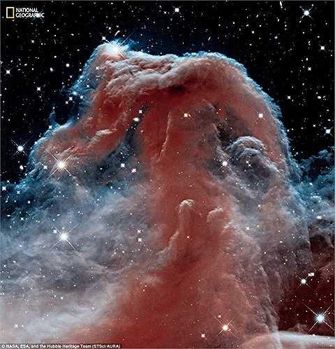 Tinh vân Đầu Ngựa là một đám mây lạnh, được hình thành bởi khí và bụi, in bóng những tinh vân sáng IC 434. Tinh vân này nằm cách gần 1.500 năm ánh sáng từ Trái đất