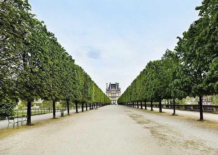 9. Paris, Pháp: Đi dạo dọc sông Seine và chiêm ngưỡng Tháp Eiffel và tham quan các triển lãm tại Louvre sẽ là lựa chọn tuyệt vời của du khách. Tại Notre Dame, bạn có thể mua sắm với giá tốt tại Marché aux Puces de Montreuil hay Marché Biologique Raspail.