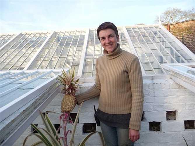 Để tạo ra điều kiện thời tiết ấm như các vùng nhiệt đới, Lost Gardens of Heligan đã sử dụng nhà kính thân thiện với môi trường được làm nóng bởi nhiệt lượng tỏa ra từ phản ứng hóa học giữa 30 tấn phân, nước tiểu ngựa và rơm.