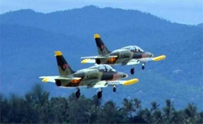 Để tăng cường quan hệ hợp tác trong lĩnh vực quân sự, Bộ trưởng Quốc phòng Cộng hòa Séc Alexandr Vondra cũng đã đề xuất, các công ty của Séc có thể tham gia quá trình hiện đại hóa máy bay huấn luyện L-39 trong Không quân Việt Nam.