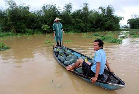 Quảng Nam, lũ lụt, nước sông lên nhanh, hoa màu, mất trắng, nông dân, thiệt hại