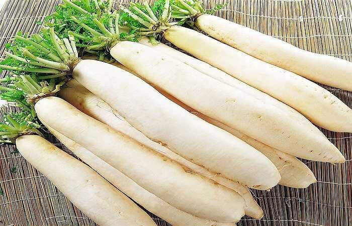 Củ cải trắng: Đây là một trong những loại thực phẩm bổ dưỡng chứa đủ các chất cần thiết để phục vụ cho sức khỏe con người. Theo nghiên cứu thì cứ trong 100g củ cải sẽ có 93,5g nước chính vì thế củ cải có tác dụng hiệu quả trong việc giải nhiệt mùa hè, đặc biệt là trong giải nhiệt miệng.