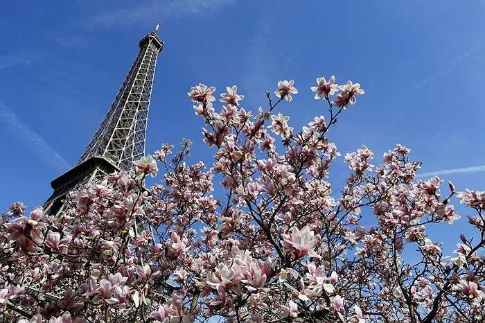 18cm là chiều cao Eiffel có thể tăng lên do quá trình giãn nở nhiệt của kim loại
