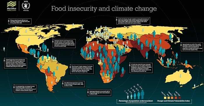 Thiếu lương thực. Ngoài các loài cá, nhiều loại thức ăn thế giới cũng bị ảnh hưởng nặng nề bởi biến đổi khí hậu, dịch bệnh tàn phá mùa màng và năng suất lao động của ngành nông nghiệp đang bị hạ thấp