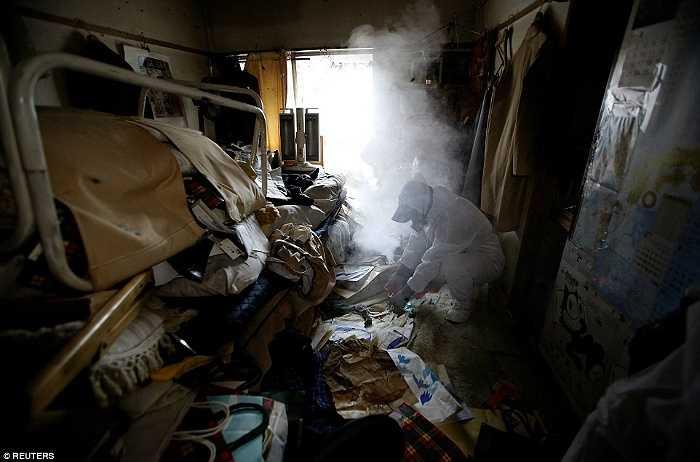 Một công nhân phun thuốc diệt ruồi trong căn hộ đầy rác thải ở Tokyo.