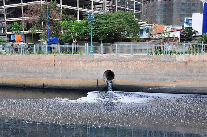 Dòng nước trên kênh Tân Hóa - Lò Gốm đã bớt ô nhiễm sau hơn 3 năm cải tạo.