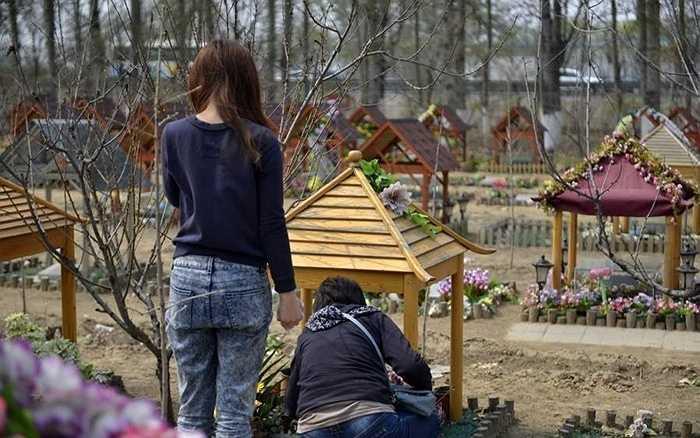 Một gia đình đang đến thăm mộ của chú chó Baby - sống cùng gia đình này 7 năm cho đến lúc chết.
