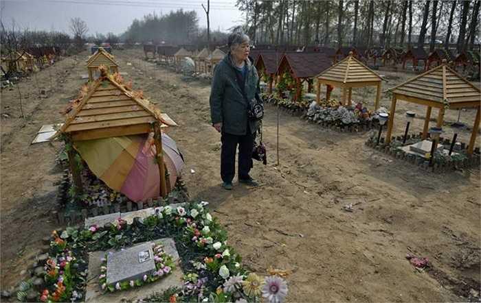 Một cụ bà có phần mộ của 2 con chó và mèo từng sống cùng cụ nhiều năm.