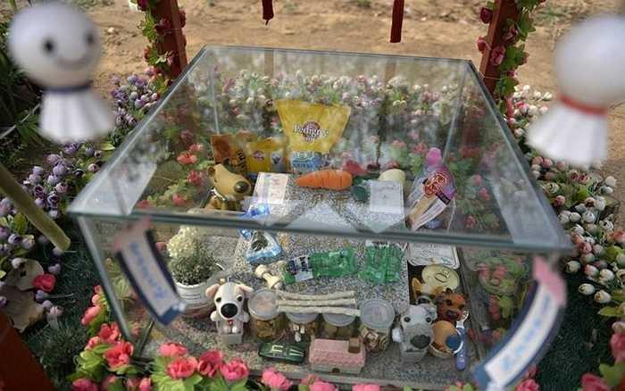 Trên phần mộ của một con chó có bọc kính, bên trong đựng đồ ăn, đồ chơi của chủ nhân đặt vào mỗi dịp đến thăm