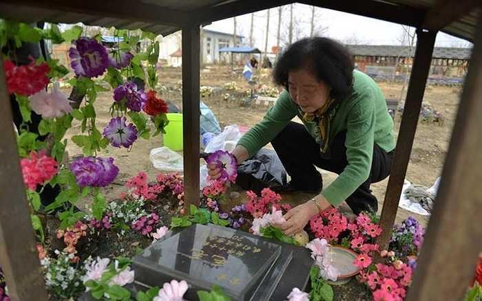 Một cụ bà đến từ Thâm Quyến đã chôn chú chó từng sống cùng 17 năm tại đây. Đã 2 năm, cụ không đến thăm phần mộ của chú cún cưng, năm nay cụ đáp máy bay từ Thâm Quyến lên Bắc Kinh