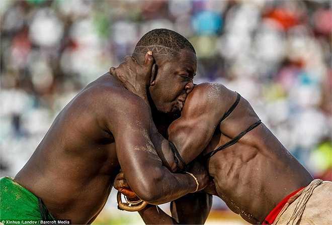 Những người dân tại Senegal đã tỏ ra vô cùng hào hứng khi được xem trận đấu vật hấp dẫn tại sân vận động Demba Diop ở thủ đô Dakar.