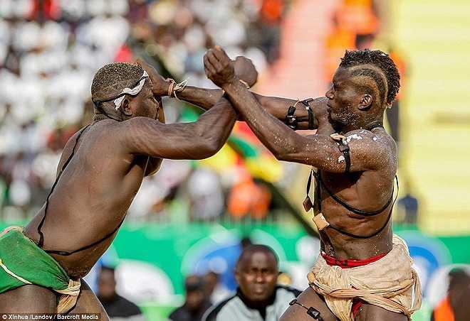 Luật thi đấu khá đơn giản nhưng đầy tính khốc liệt. Các võ sĩ có quyền đấm vào mặt, đầu hoặc knock-out đối thủ.