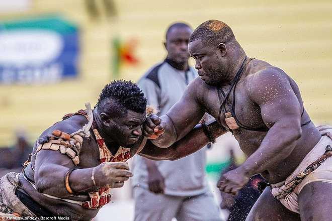 Trận đấu giữa hai đô vật được ưa thích nhất: Balla Gaye và Eumeu Sene.