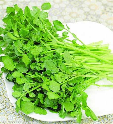 Cải xoong là thực phẩm giàu chất chống oxy hóa, chứa vitamin C, K, canxi, beta-carotene, sắt và iốt. Một số nghiên cứu đã tìm thấy cải xoong có tính chất chống ung thư và có thể giúp sửa chữa ADN hỏng.