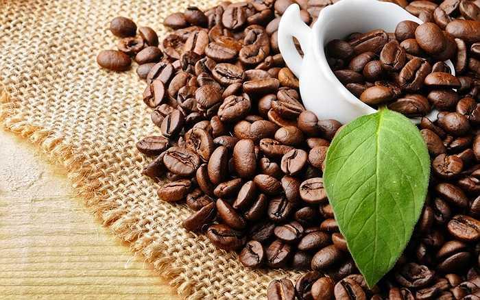 12. Những hạt cà phê chứa rất nhiều các chất kích thích hóa học khác nhau, nếu được sử dụng với số lượng cao, sẽ trở nên độc hại. Chất caffeine gây ra lo âu, rối loạn giấc ngủ và nhiều vấn đề về hệ thống tim mạch.