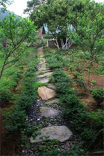 Ngắm ngôi biệt thự xanh mát đáng mơ ước của gia đình Mỹ Linh.