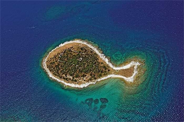 Đảo hình con cá, Croatia: Nó là một trong 14 hòn đảo nhỏ thuộc quần đảo Brijuni, ở phía bắc biển Adriatic