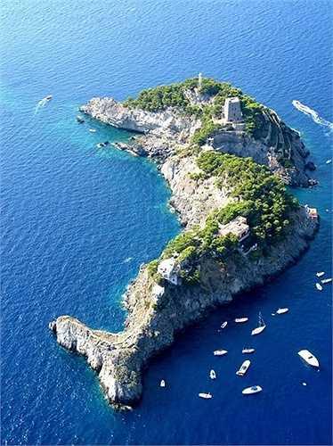 Đảo hình cá heo, Ý: Nằm ở bờ biển Amalfi, phía nam Italy, giữa đảo Capri và làng Positano là đảo Sirenuse với hình dáng là chú cá heo xinh đẹp