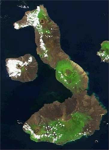 Đảo hình cá ngựa, Ecuador: Với diện tích 4.640 mét vuông, đảo Isabela được coi là hòn đảo lớn nhất trong quần đảo Galapagos