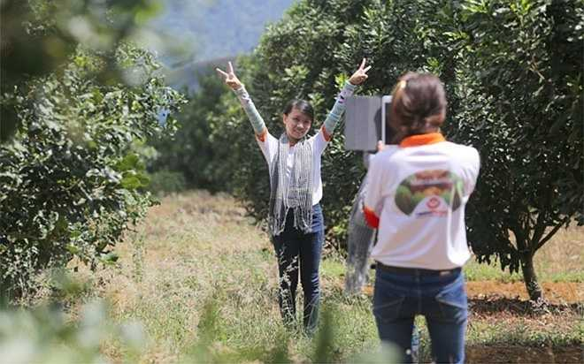 Các sinh viên Đại học Ngân hàng TP HCM, trong một chuyến tìm hiểu thực tế trồng mắc ca tại Tây Nguyên.