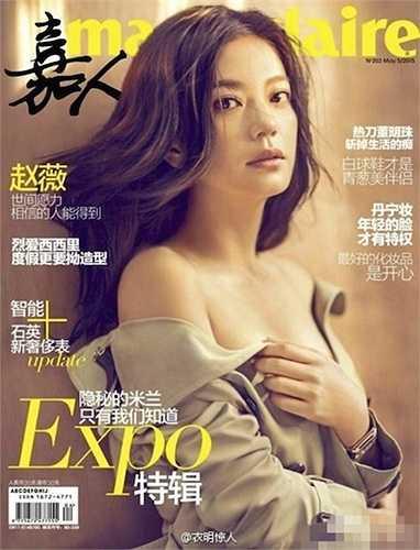 Không chỉ xinh đẹp, Triệu Vy hiện giờ ngày càng giàu có. Cri vào sáng 9.4 đưa tin, vợ chồng Triệu Vy hiện đang sở hữu khối tài sản khổng lồ lên tới 4,5 tỷ HKD (12.600 tỷ đồng).