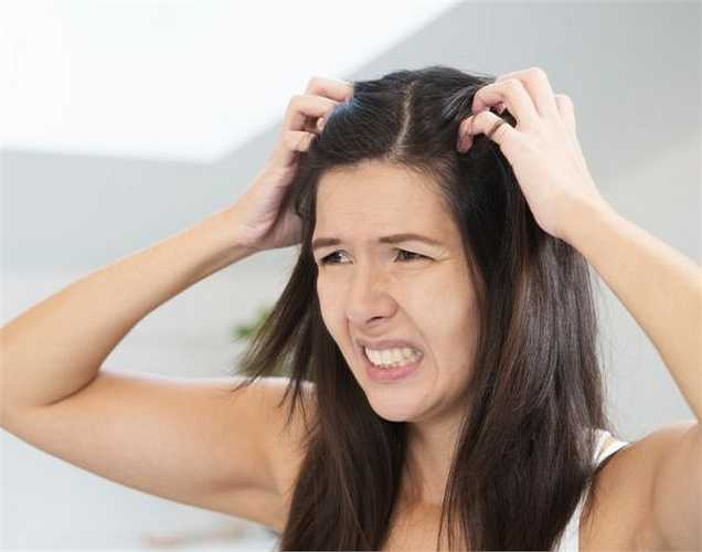 Dưỡng tóc: Hương bạc hà thơm tự nhiên, dùng nước ép bạc hà để mái tóc của bạn luôn mượt mà và đẹp tự nhiên.