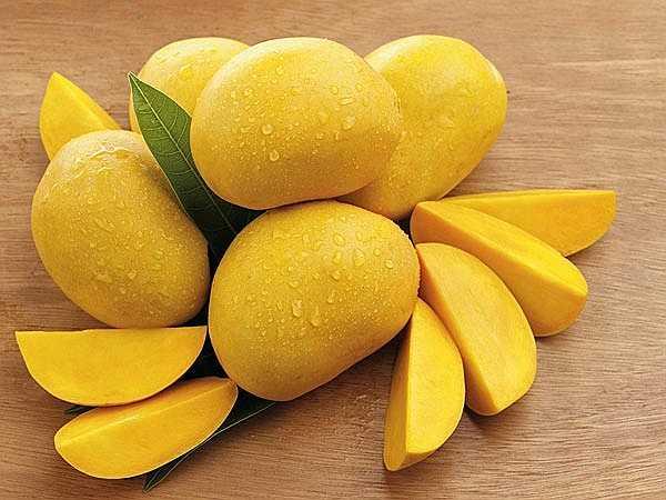 Xoài: Xoài được coi là vua của các loại trái cây và có sức mạnh kỳ diệu giúp tăng cân khi được tiêu thụ thường xuyên. Xoài giàu hàm lượng dinh dưỡng và calo, mang lại lợi ích kép cho sức khỏe. Xoài cũng là một loại trái cây sạch nhất, bạn có thể hoàn toàn yên tâm khi ăn chúng.
