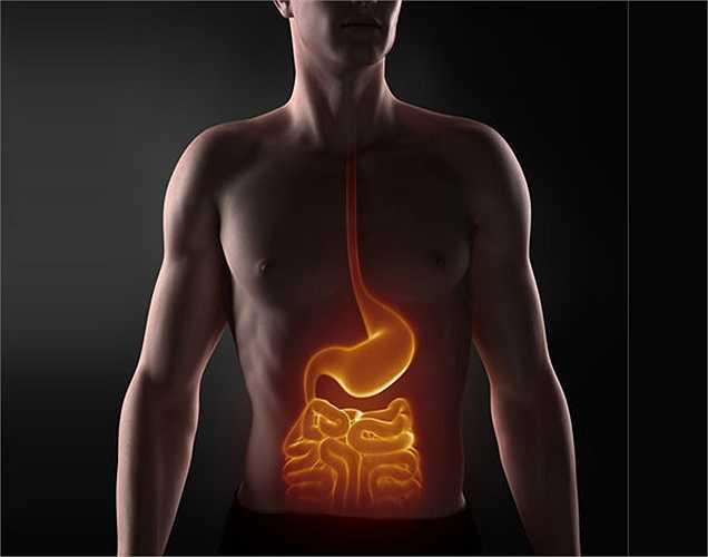 Đại tràng: Các loại thực phẩm giàu chất xơ tốt cho đại tràng, nó ngăn ngừa ung thư ruột, và rất tốt cho hệ tiêu hóa.