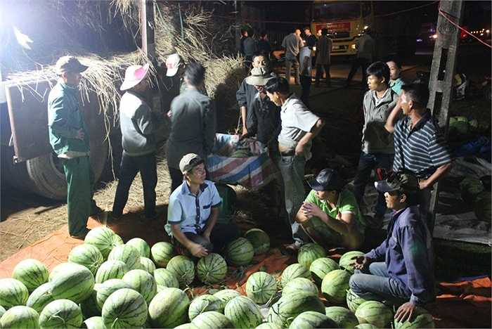 Những tấn dưa cuối cùng được người dân chất lên xe chuyển ra Hà Nội.