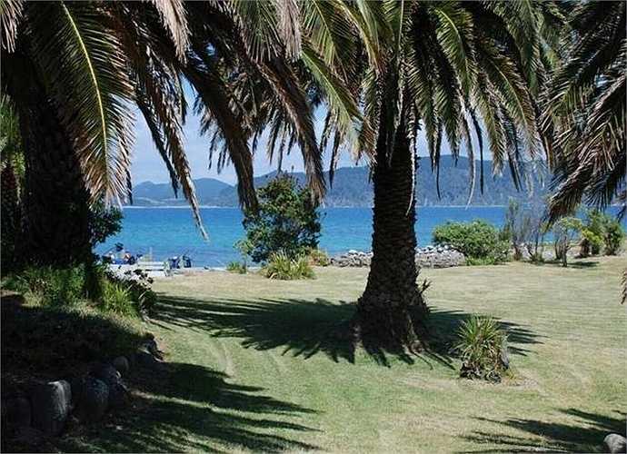 Trên đảo, không chỉ không gian thoáng đãng mà còn có bãi cỏ và cây xanh mướt quanh năm rất thích hợp cho chuyến nghỉ dưỡng