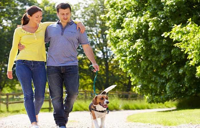 Cường độ hoạt động: Người lười vận động sẽ có nguy cơ cholesterol cao hơn những người thường xuyên tập luyện. Nếu bạn có thể đảm bảo được mức trọng lượng cơ thể hợp lý cùng với chế độ tập luyện thể dục thể thao đều đặn, bạn có thể cải thiện tình hình mỡ máu tăng cao.