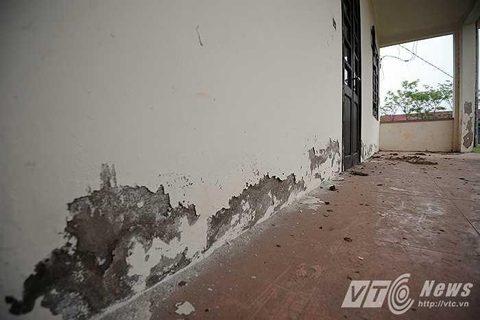 Những mảng tường bong tróc, dọc hành lang của ngôi trường là nơi cho trâu bò, động vật phóng uế bừa bãi.