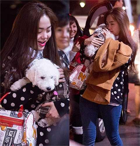 Cả nhà cô ai cũng yêu quý nó như người bạn thân thiết. Thậm chí, nữ ca sỹ thường xuyên ôm cún ngủ và đi đâu cũng muốn về sớm để chơi với Santa. Mỗi lần nữ ca sỹ lưu diễn nước ngoài trở về, gia đình Minh Hằng luôn hộ tống chó cưng ra sân bay đón cô chủ.