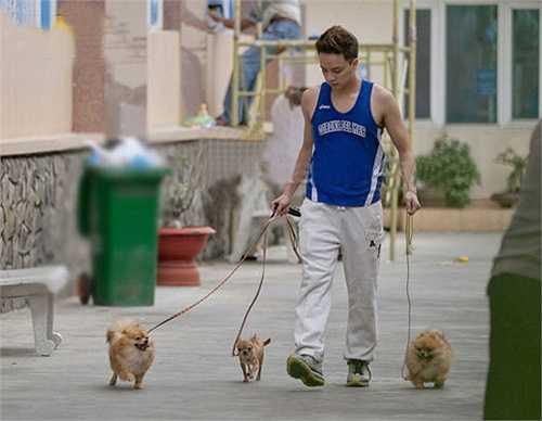 Tuy luôn bận rộn với lịch lưu diễn dày đặc nhưng Cao Thái Sơn vẫn dành thời gian để dắt cún đi dạo mỗi chiều và xem đây là việc cần làm để mang lại cảm giác vui vẻ, thoải mái.